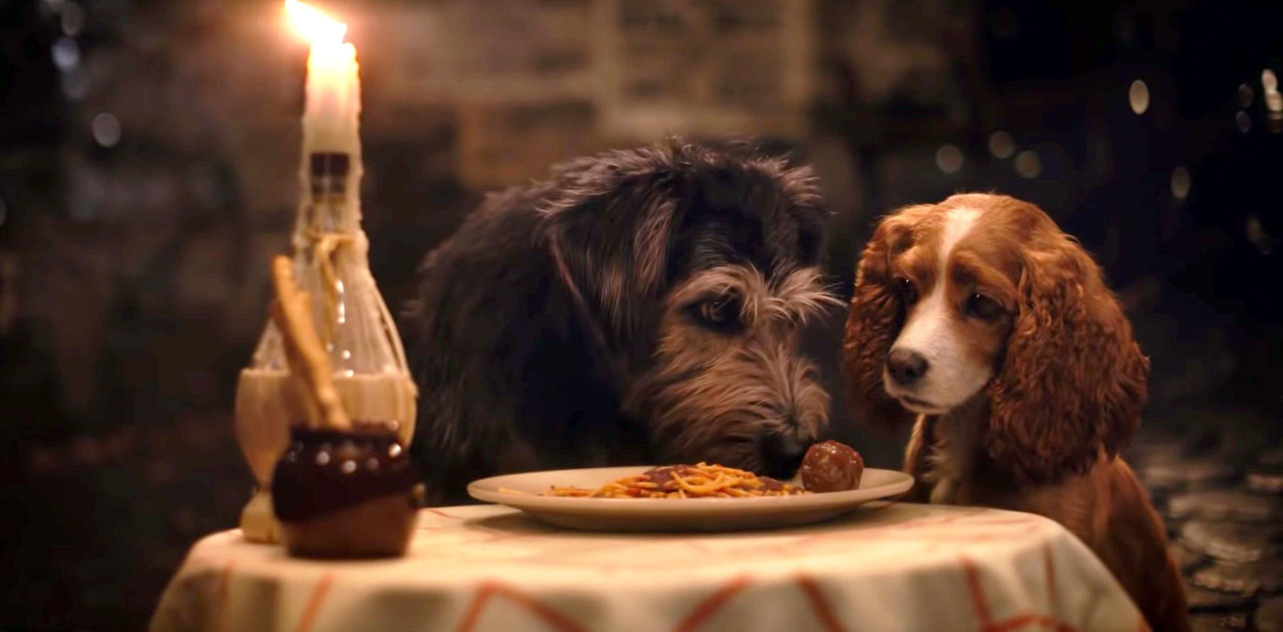 A Dama e o Vagabundo comam espaguete-