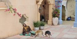 """Havia também um certo mendigo, chamado Lázaro, que jazia cheio de chagas à porta daquele."""" (Lucas 16.19)"""
