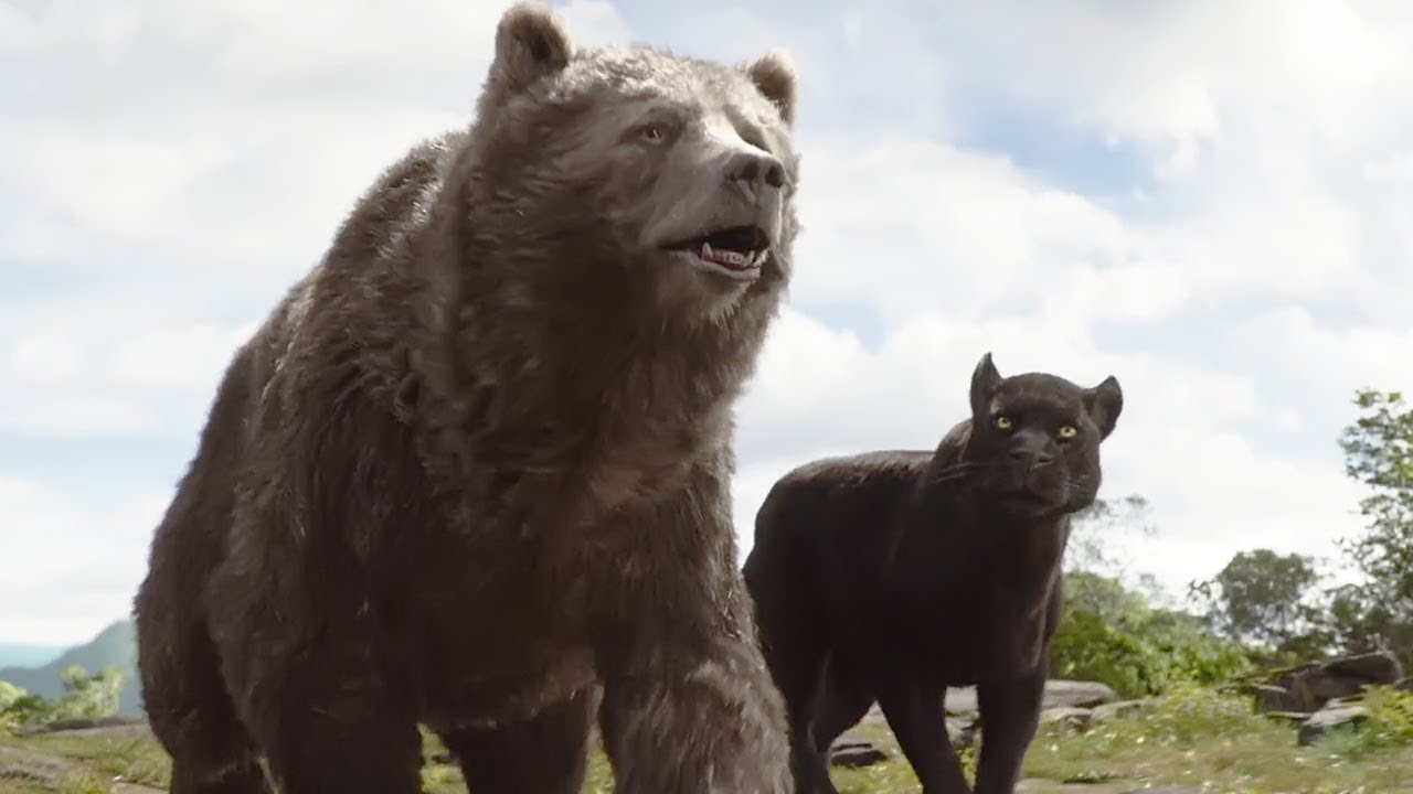 Baloo e Bagheera