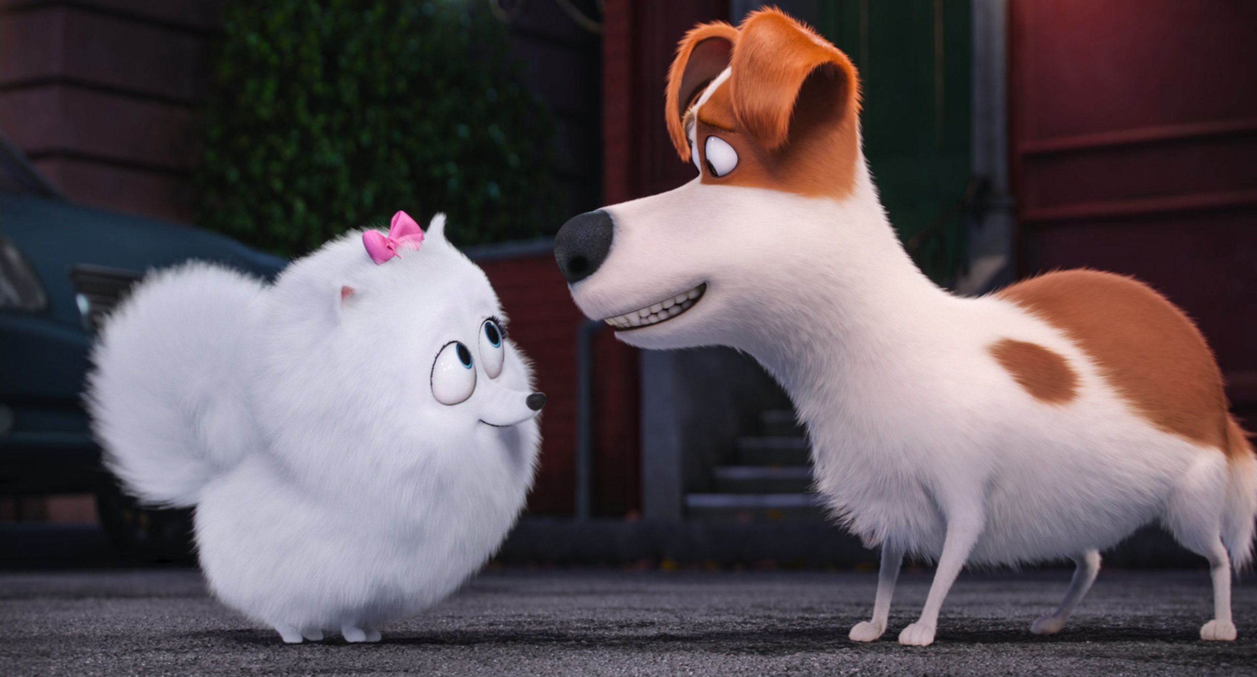 Gigi e Max