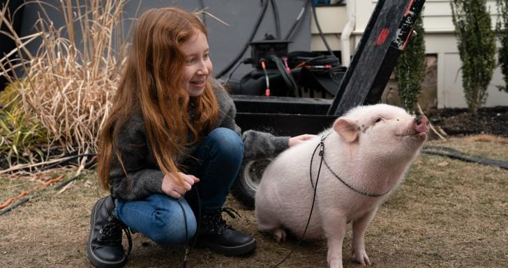 Mia com o porquinho