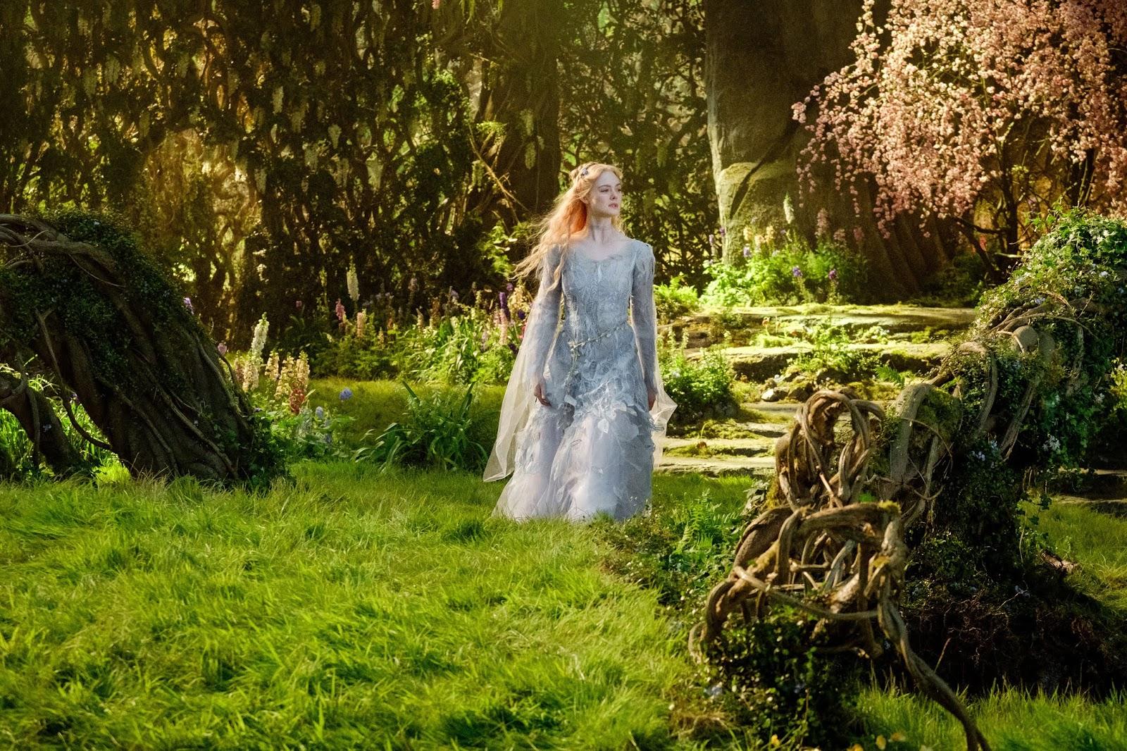 Aurora na floresta